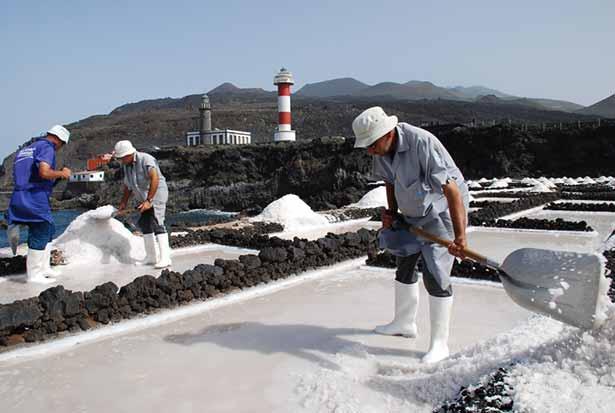 El jard n de la sal abocados apuntes de gastronom a for Jardin de sal