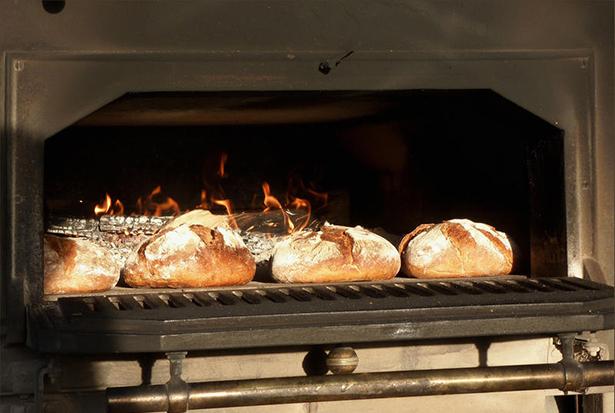El pan desarrollado en este estudio fue comparado con pan de harina de trigo normal y con pan de harina de arroz | Imagen: oxfordian.world.