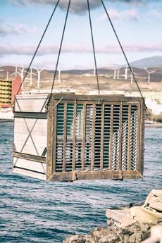 Una estructura de hormigón y acero alberga en el interior varias cavas con una capacidad inicial de cinco mil botellas