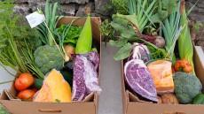 Cesta de verduras y hortalizas de La Finca Verde | Foto: J.L.C.