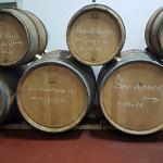 Barricas con los vinos de Envínate | Foto: J.L.C.