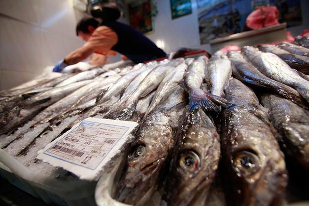 La merluza capturada en el Mediterráneo es una de las especies que sufre mayor sobreexplotación pesquera de toda Europa