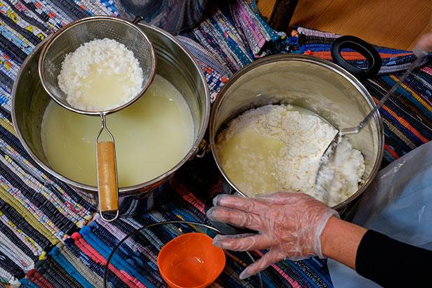 Demostración de la elaboración del queso durante la presentación de la iniciativa