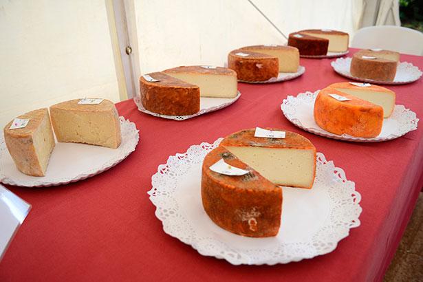Algunos de los quesos presentados a concurso | Foto: Cabildo de Gran Canaria