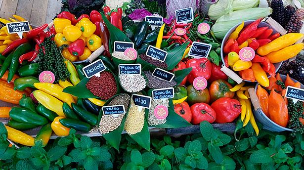 Se recomiendan los azúcares de asimilación lenta, como los cereales integrales y las batatas | Foto: J.L.C.