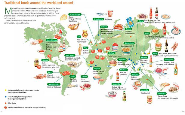 Gráfico sobre los alimentos que contienen o potencian el sabor umami | Foto cedida por Umami Information Center
