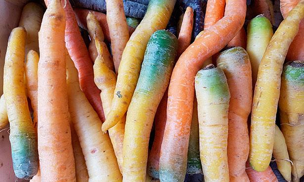 Zanahorias | Foto: J.L.C.