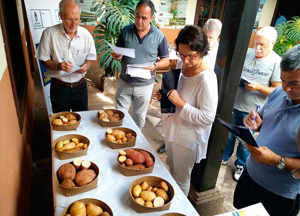 El jurado examina las variedades de papas antes de la degustación