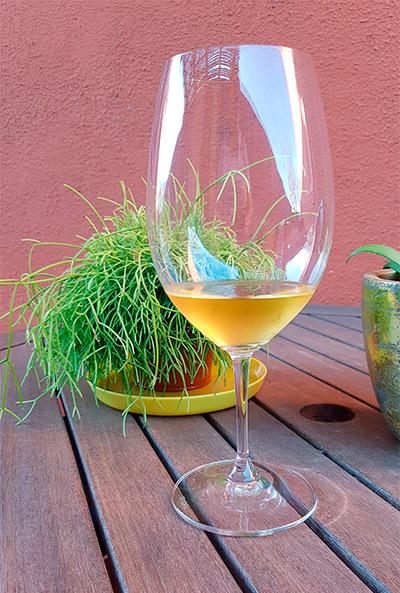 Copa de vino de Jerez | Foto: J.L.C.