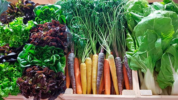 Los autores del informe apuntan a la cada vez mayor presencia de fruta de importación y a la tendencia al alza de los alimentos ecológicos   Foto: J.L.C.