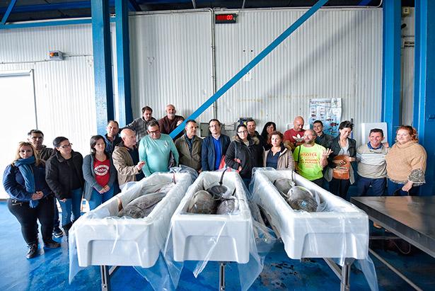La marca Pesca Artesanal se ha implantado en un total de 20 establecimientos entre cofradías de pescadores, empresas de distribución y comercialización de pescado y restaurantes