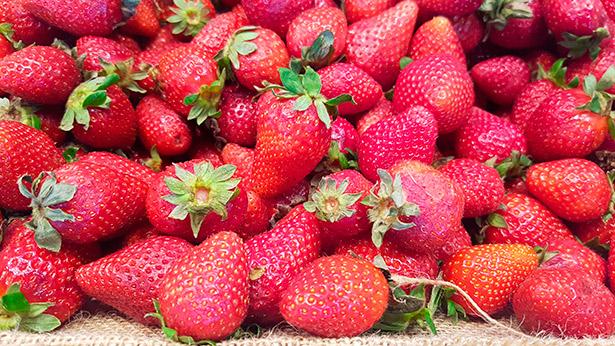 Fresas de Valsequillo | Foto: J.L.C.