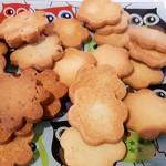 Las Delicias de Lucila ha recuperado las recetas de los abuelos y elaboran galletas sin azúcar o con espelta   Foto: abocados.es