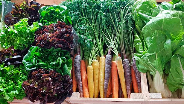 El consumo de verduras debería elevarse en las cenas | Foto: abocados.es