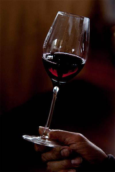 Los vinos herreños pueden presumir de territorio y singularidad Foto: Enrique Tapias