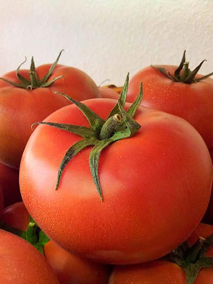 Tomates | Foto: abocados.es
