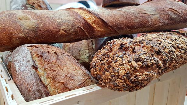 Los restos sugieren que seguramente produjeron pan plano, del tipo conocido como pan de pita   Foto: J.L.C.