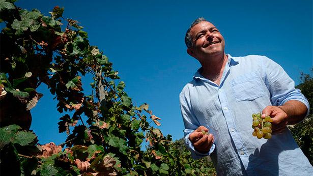 Alberto González, en las viñas de bodegas El Lomo   Foto: Fran Pallero