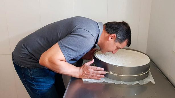 Josep Roca huele uno de los quesos palmeros en elaboración durante su visita a la Isla
