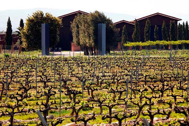 Bodega y viñedos Heraclio Alfaro