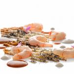 Camarón de Mogán en la arena de playa