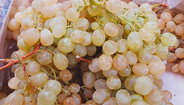 La investigación empresarial se dirige a frutos sin semillas, más crujientes, firmes y con un grado elevado de azúcar | Foto: J. L. Conde