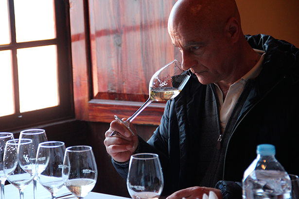 Una veintena de catadores elegirán los mejores vinos de Canarias