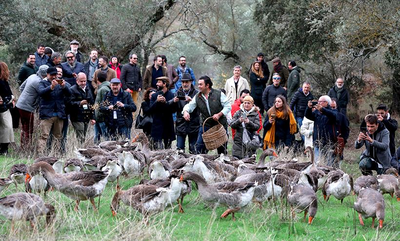 Visita a la Patería de Sousa (Pallares, Badajoz), donde se elabora uno de los mejores foies del mundo