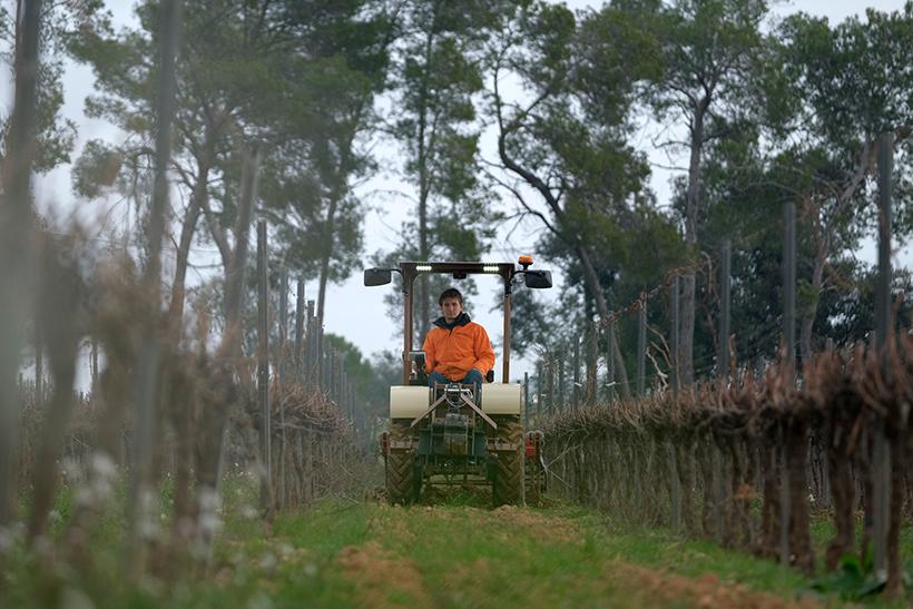 Tractor eléctrico que está probando Familia Torres en sus viñedos | Foto: Jordi Elías