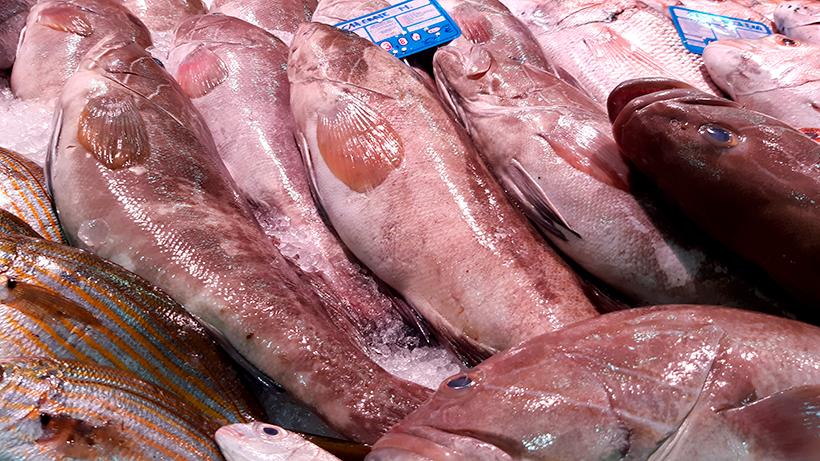 Chernes, en el Mercado Nuestra de África, en la capital tinerfeña | Foto: José L. Conde