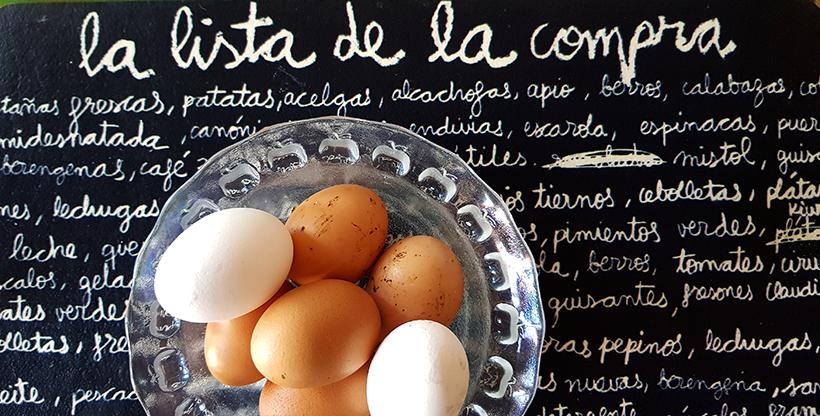 Huevos ecológicos de Tenerife | Foto: José L. Conde