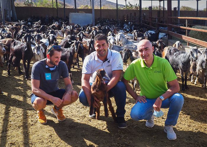 Cristian Barticel, Alberto Montesdeoca y Roberto Castro, con un cabrito en la Granja Montesdeoca | Foto: Sergio Méndez