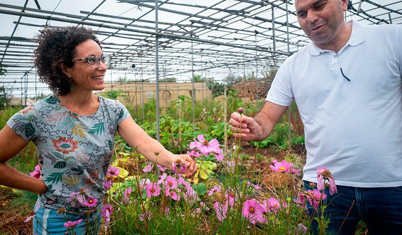 Laura López y Pedro Rodríguez Dios junto a una planta con flores de cosmos   Foto: Fran Pallero