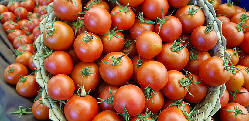 Tomates de Fuerteventura | Foto: José L. Conde