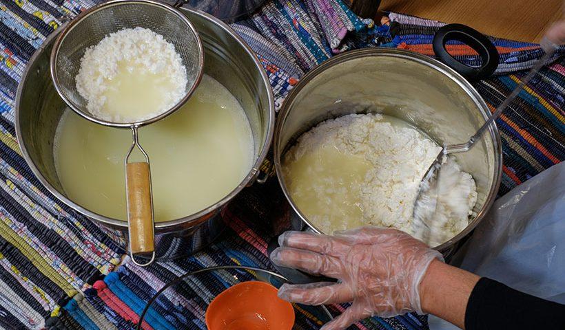 Elaboración artesanal de queso grancanario