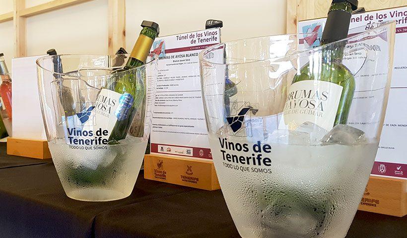 Vinos de Tenerife | Foto: José L. Conde